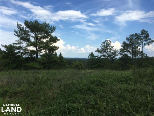 Sardis Road Development And Hunting : Kimberly : Jefferson County : Alabama