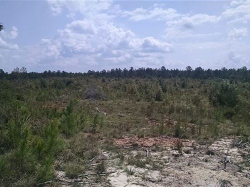 34 Acres - Fairfield County, Sc : Winnsboro : Fairfield County : South Carolina