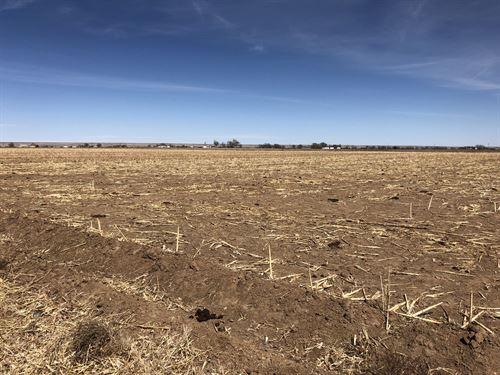 Cherry Road Farm Middle 40 : Boone : Pueblo County : Colorado