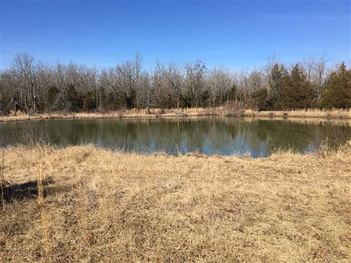 246 Acres, Hunters Paradise : Ash Flat : Sharp County : Arkansas