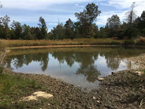 105 Acres Wooded, Ponds, Highwa : Cave City : Sharp County : Arkansas