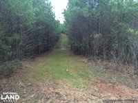 Great Hunting Tract OR Home Site in : Kosciusko : Attala County : Mississippi