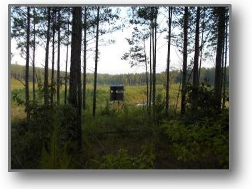 336 Acres In Lafayette County In Ox : Oxford : Lafayette County : Mississippi