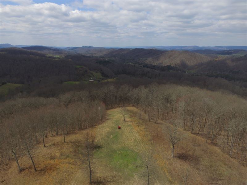 Private 18 Acre Retreat : Eidson : Hawkins County : Tennessee