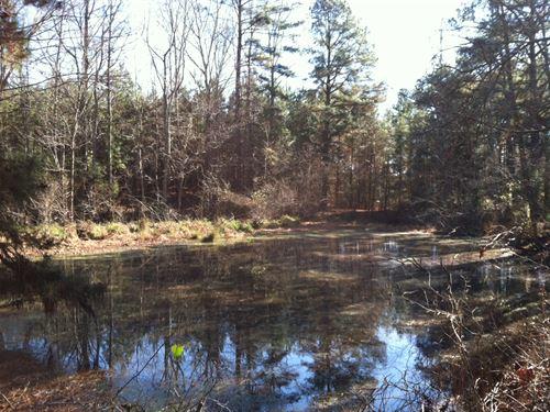 30.09 Acres, Fairfield County, Sc : Ridgeway : Fairfield County : South Carolina