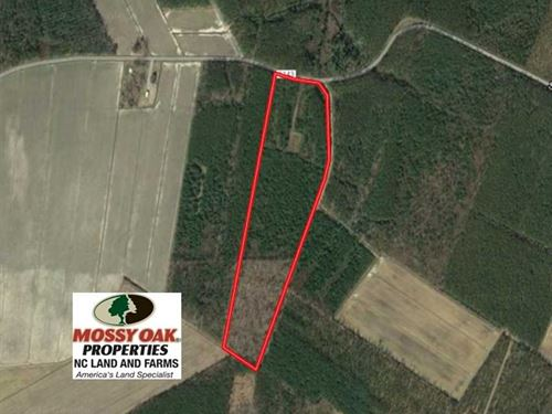 25.13 Acres of Affordable Clear Cu : Scranton : Hyde County : North Carolina