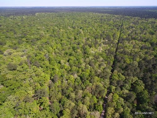 360 Ac - Development Or Large Acrea : 52164 : Ouachita Parish : Louisiana