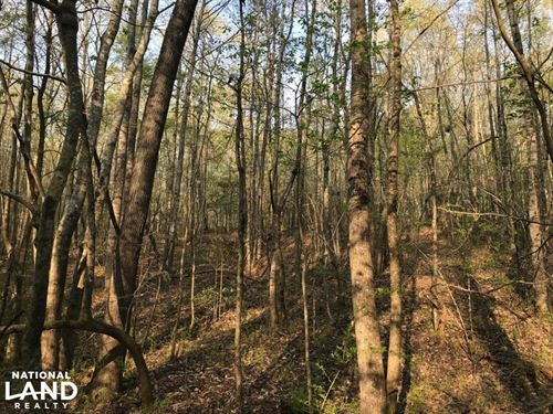 Highway 20 Homesite And Recreation : Pelzer : Anderson County : South Carolina