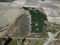 77 Acre Irrigated Farm w/ Pine : McCrory : Woodruff County : Arkansas