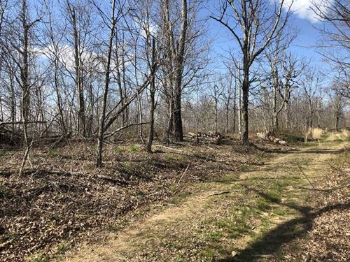 Price Reduced, 17 Acres With : Marshall : Searcy County : Arkansas