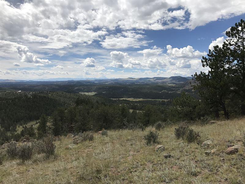 Teller Park Ranch - Parcel 1 : Florissant : Park County : Colorado