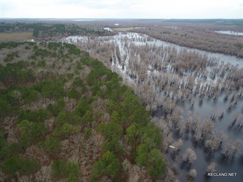 100 Ac - Timber & Hunting With : Winnfield : Winn Parish : Louisiana