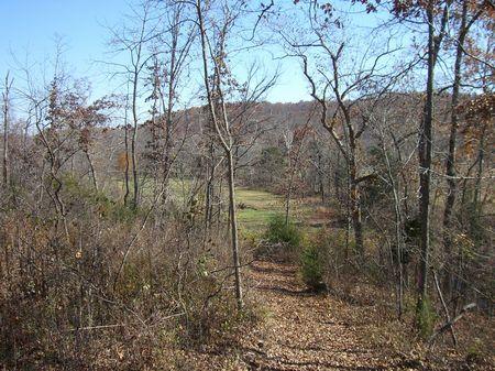 Spring Valley Ranch : Ravendon Springs : Randolph County : Arkansas