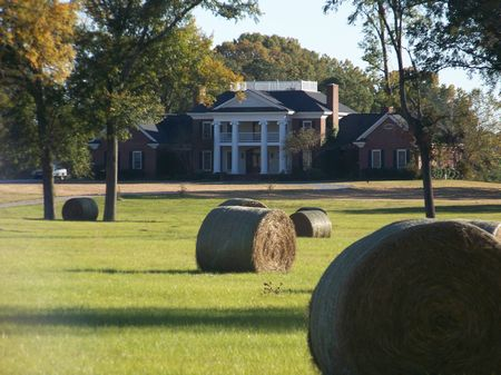Southern Charm Alabama Cattle Ranch : Snowdoun : Montgomery County : Alabama