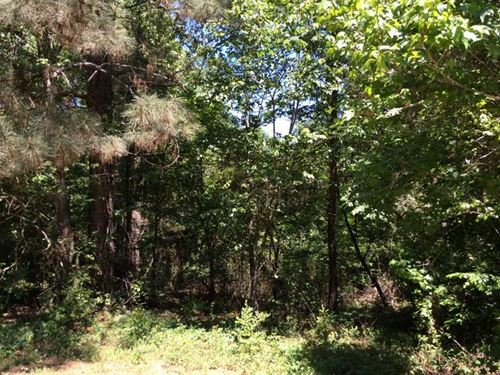 10 Acres Heavily Wooded, Nacogdoch : Nacogdoches : Texas