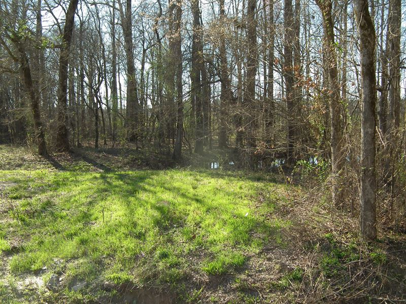 American legion lake b ranch for sale philadelphia for Fishing camps for sale in mississippi