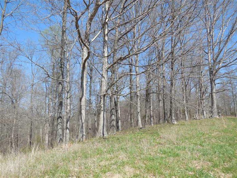 Hibernia Ridge Rd, Tract 5 : Ranch for Sale : Buffalo