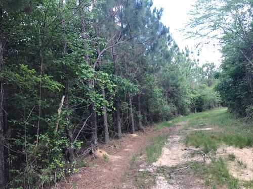 Beautiful River Front Property : Skipperville : Dale County : Alabama