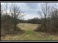 Grove Run - Tract 10 : Ashville : Pickaway County : Ohio