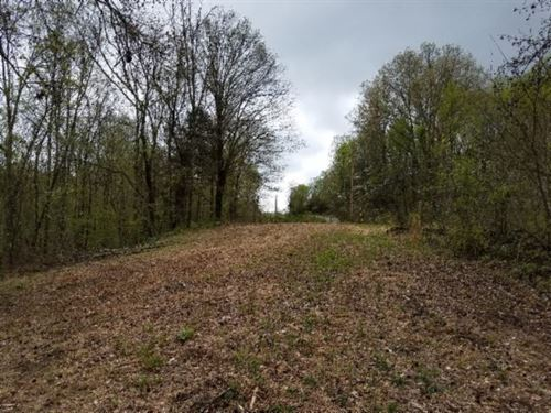 Reduced 40Ac W/River Frontage : Burkesville : Cumberland County : Kentucky