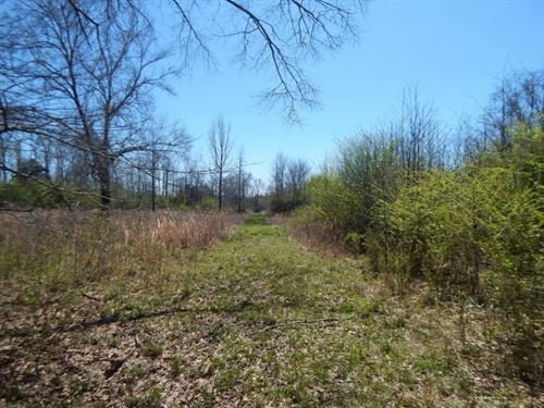 123 Acres In Holmes County In Lexin : Lexington : Holmes County : Mississippi