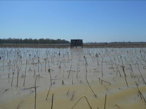 160 Acres In Tallahatchie County : Stover : Tallahatchie County : Mississippi