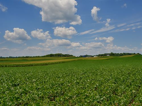 363 Acre Crop Farm : Somerset : Madison County : Virginia