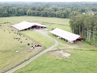 River Oaks Farm : Dalton : Whitfield County : Georgia