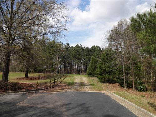 74 Acres Close To Downtown Lau : Laurens : South Carolina