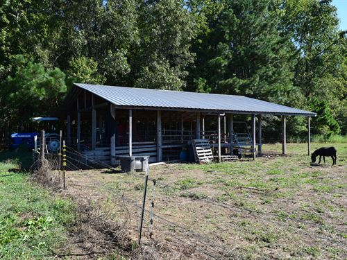 Beautiful Pasture And Hunting Land : Dutton : Jackson County : Alabama