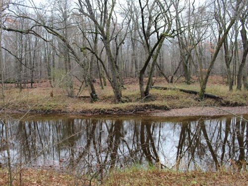 85 Acres Property On A Dead End Rd : Marshfield : Wood County : Wisconsin