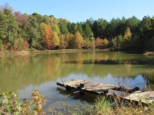 49 Acres Bordering National Forest : Ozone : Johnson County : Arkansas