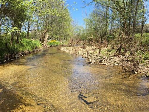 Ferris Creek Rd, 114 Acres : Dubre : Metcalfe County : Kentucky