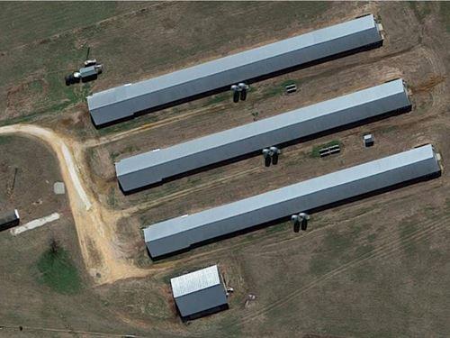 Tyson Broiler Farm With 3 Houses : West Fork : Washington County : Arkansas