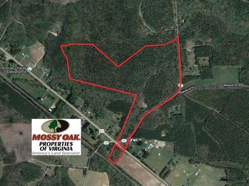 Reduced, 74.81 Acres of Recreatio : Ivor : Southampton County : Virginia