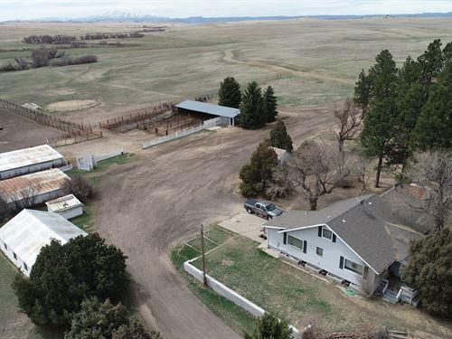 Antelope Creek Ranch Auction : Franktown : Douglas County : Colorado