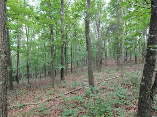 Plainfield Rd - 10 Acres : New Concord : Muskingum County : Ohio