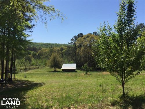 Shoal Creek Road Farm & Timber Trac : Ashville : Saint Clair County : Alabama