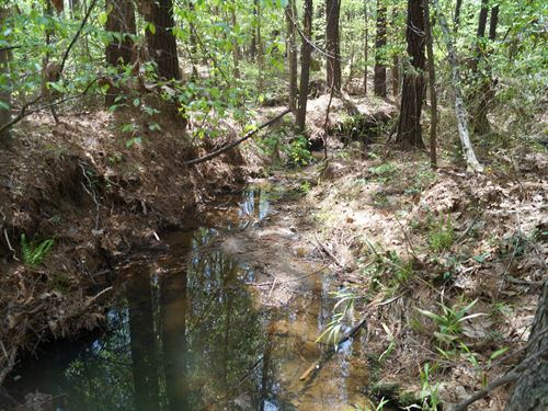 14 Acres - Fairfield County, Sc : Great Falls : Fairfield County : South Carolina