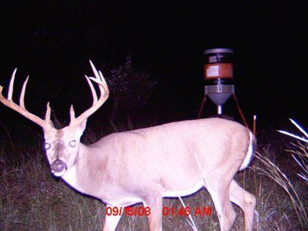 2400 Acs Hunting & Cattle Ranch : Sedan : Chautauqua County : Kansas