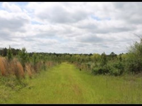 236.9 Acres In Attala County : West : Attala County : Mississippi