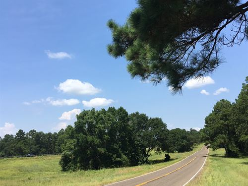 1185 Acres I-45 Service Road : Huntsville : Walker County : Texas