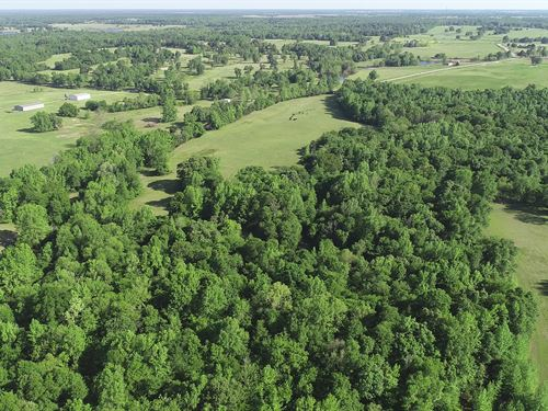 Recreational Large Acreage Land : Detroit : Red River County : Texas