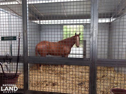160 Log Cabin Road/Horse Training : Siler City : Chatham County : North Carolina