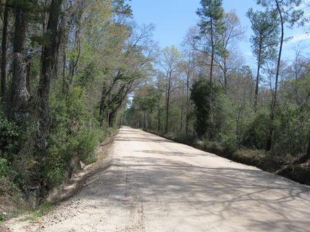 Jones Houston B Tract : Brooklet : Bulloch County : Georgia
