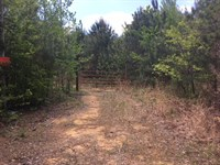 Hunting Or Cabin Retreat Site : Blountsville : Blount County : Alabama