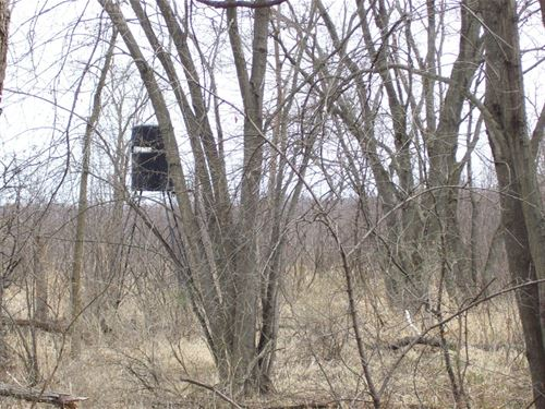 Wisconsin Hunting Land For Sale : Montello : Marquette County : Wisconsin