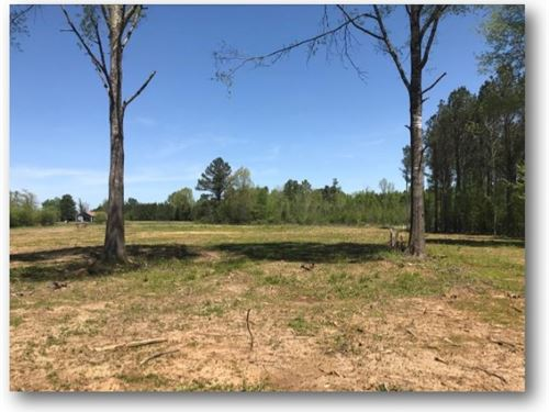 36 Acres In Noxubee County : Brooksville : Noxubee County : Mississippi