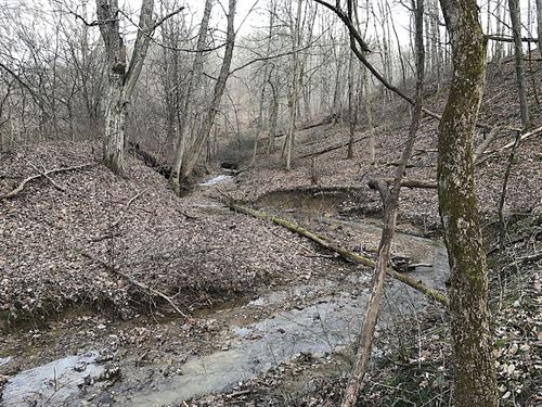 Oregon Ridge Rd - 43 Acres : Millfield : Athens County : Ohio