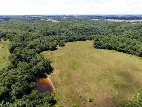 Christian County 43.2 Acres : Sparta : Christian County : Missouri